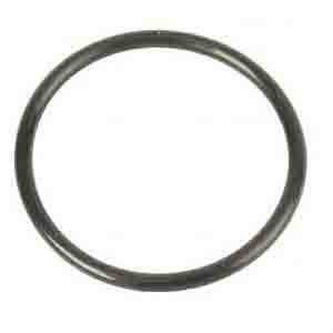 MAN O-RING ARC-EXP.402790 81965020045
