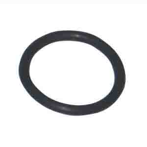 RENAULT SEAL RING ARC-EXP.600170 0003008020